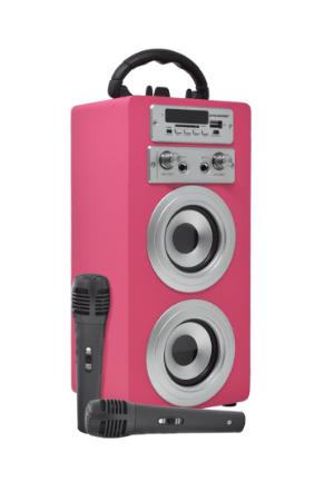 Altavoces Karaoke Serie 025